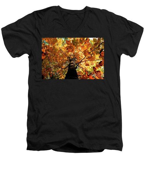 Autumn Is Glorious Men's V-Neck T-Shirt