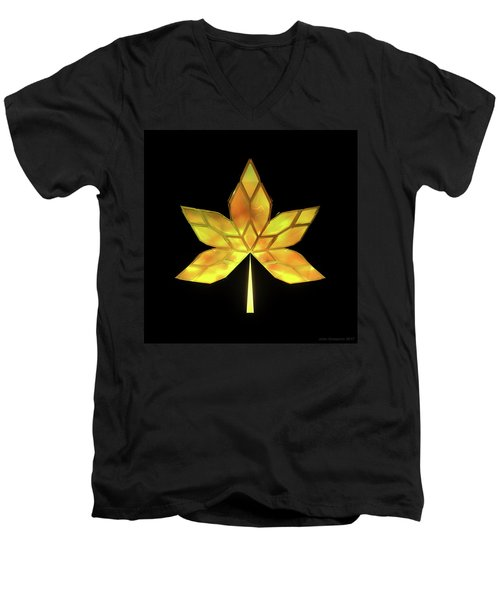 Autumn Leaves - Frame 070 Men's V-Neck T-Shirt