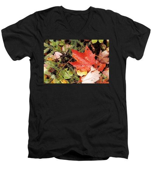 Autumn Leaves Men's V-Neck T-Shirt by Larry Ricker