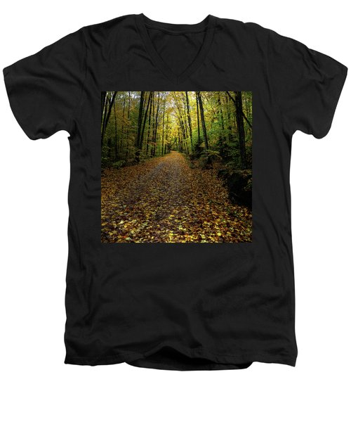Men's V-Neck T-Shirt featuring the photograph Autumn Leaves On The Trail by David Patterson