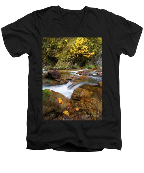 Men's V-Neck T-Shirt featuring the photograph Autumn Moment by Mike Dawson