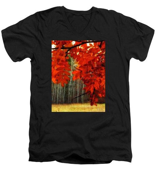 Autumn Red Men's V-Neck T-Shirt