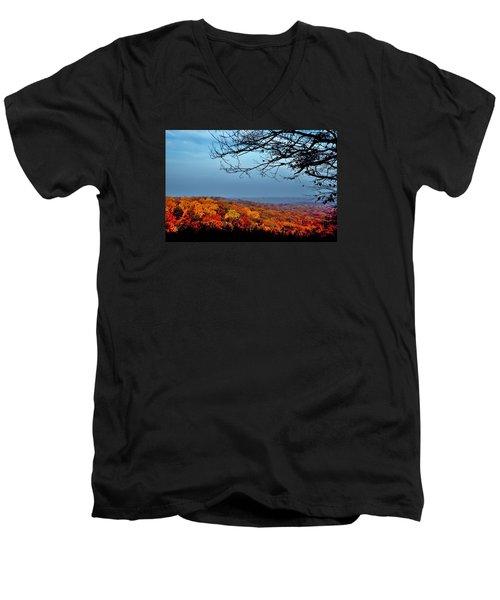 Autumn Shade Men's V-Neck T-Shirt