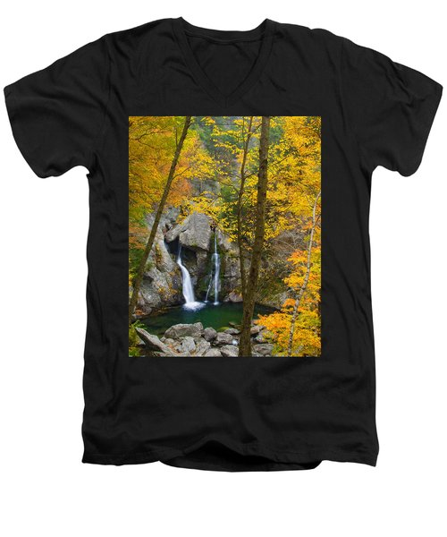 Autumn Splendor Men's V-Neck T-Shirt