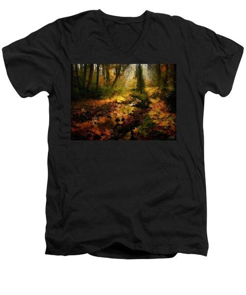 Autumn Sunrays Men's V-Neck T-Shirt