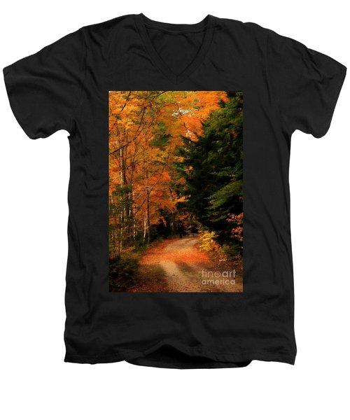 Autumn Trail Men's V-Neck T-Shirt
