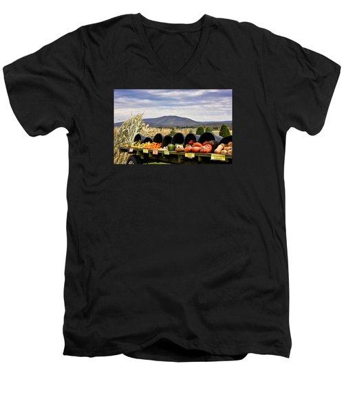Autumnal Abundance In The Blue Ridge Mountains - Virginia Men's V-Neck T-Shirt by Brendan Reals