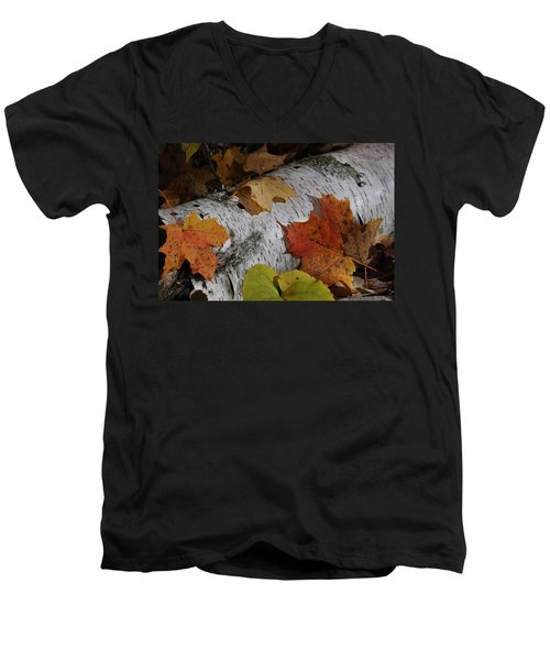 Autumnal Melange Men's V-Neck T-Shirt