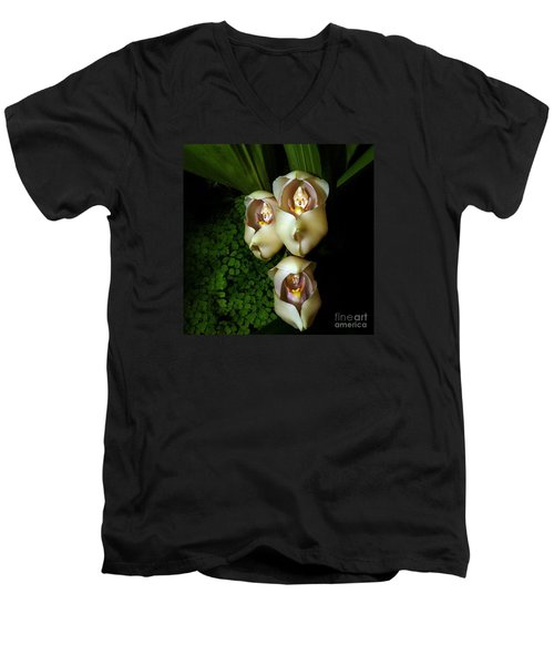 Babies In The Cradle - Floral Oddity Men's V-Neck T-Shirt by Merton Allen