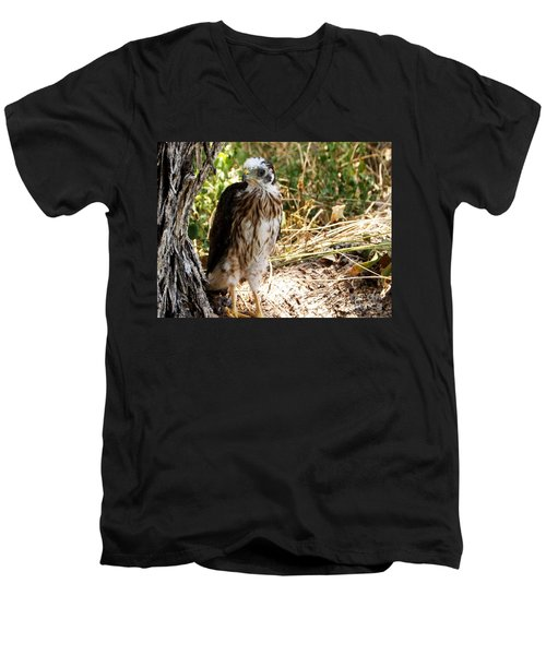 Baby Hawk Fell Out Of Nest Men's V-Neck T-Shirt