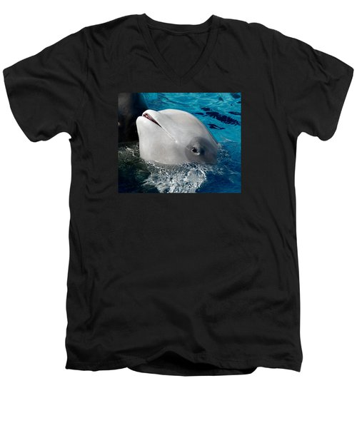 Men's V-Neck T-Shirt featuring the photograph Baby Whale by Bob Pardue