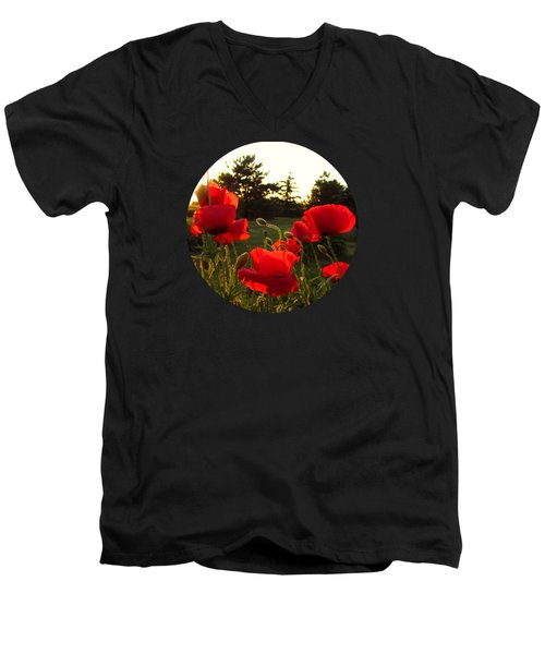 Backlit Red Poppies Men's V-Neck T-Shirt by Mary Wolf