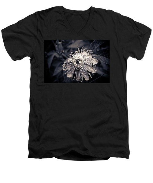 Clematis Flower Bloom Men's V-Neck T-Shirt