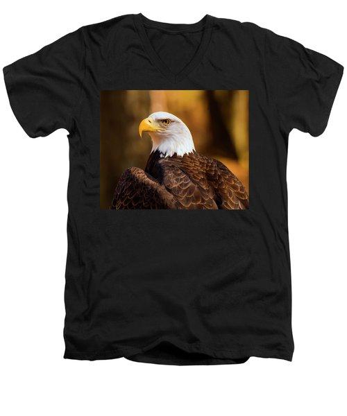 Bald Eagle 2 Men's V-Neck T-Shirt by Chris Flees