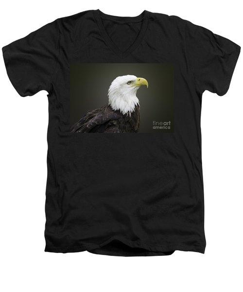 Bald Eagle Men's V-Neck T-Shirt