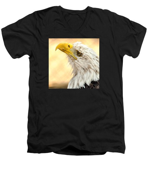 Men's V-Neck T-Shirt featuring the photograph Bald Eagle Portrait by Yeates Photography