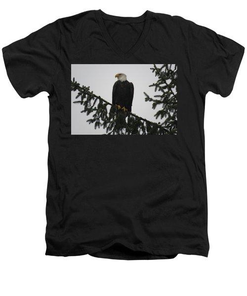 Bald Eagle Watching Men's V-Neck T-Shirt