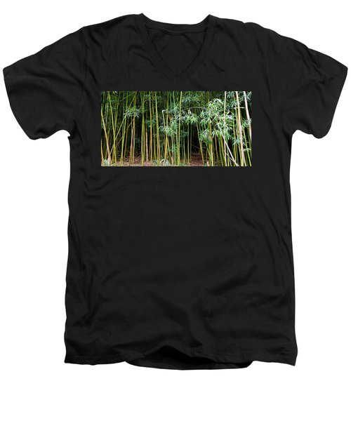 Bamboo Wind Chimes  Waimoku Falls Trail  Hana  Maui Hawaii Men's V-Neck T-Shirt by Michael Bessler