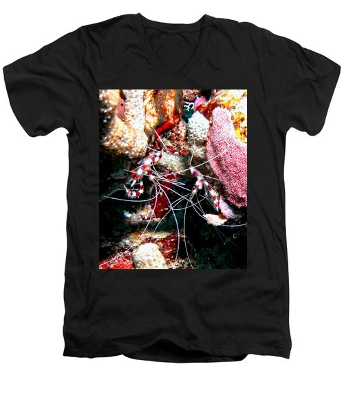 Banded Coral Shrimp - Caught In The Act Men's V-Neck T-Shirt