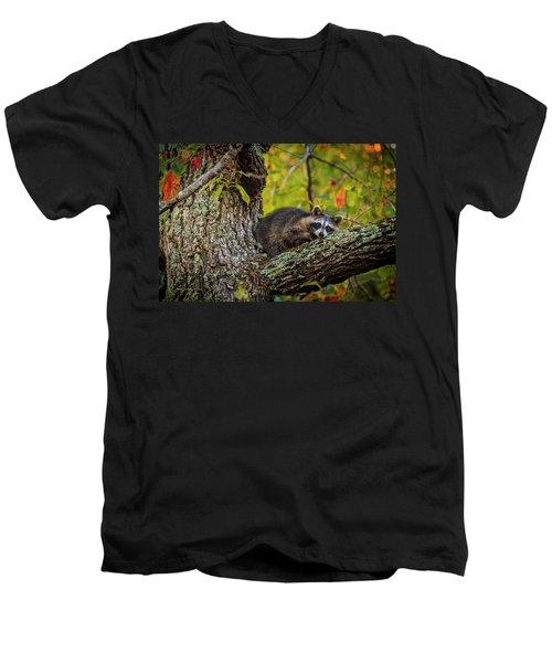 Bandit #2 Nap Time Men's V-Neck T-Shirt