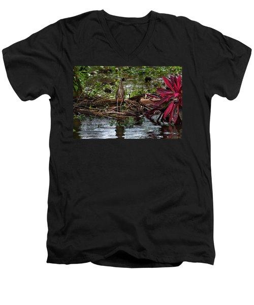 Bare-throated Tiger-heron Men's V-Neck T-Shirt by James David Phenicie