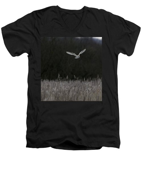 Barn Owl Hunting At Dusk Men's V-Neck T-Shirt