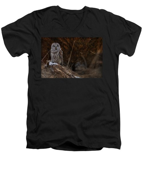 Men's V-Neck T-Shirt featuring the photograph Barred Owl On Log by Michael Cummings