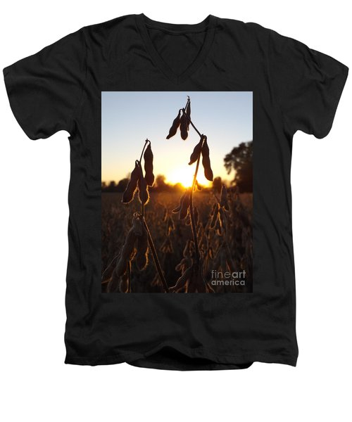 Beans At Sunset Men's V-Neck T-Shirt