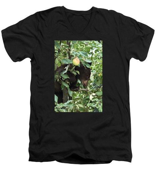 Bear Cub In Apple Tree5 Men's V-Neck T-Shirt by Loni Collins