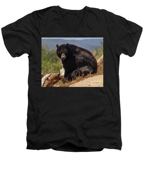 Bear Men's V-Neck T-Shirt