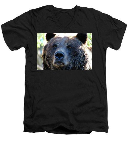 Bear On Grouse Men's V-Neck T-Shirt