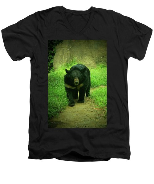 Bear On The Prowl Men's V-Neck T-Shirt by Trish Tritz