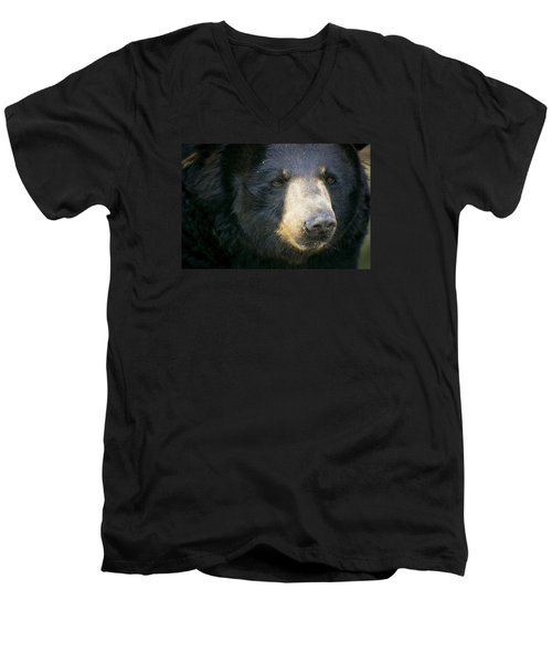 Bear With Me Men's V-Neck T-Shirt by Cheri McEachin