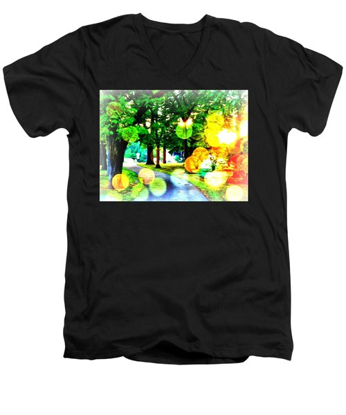 Beautiful Day For A Walk Men's V-Neck T-Shirt
