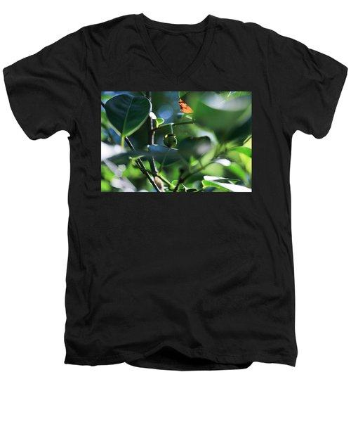 Beautiful Nature Men's V-Neck T-Shirt