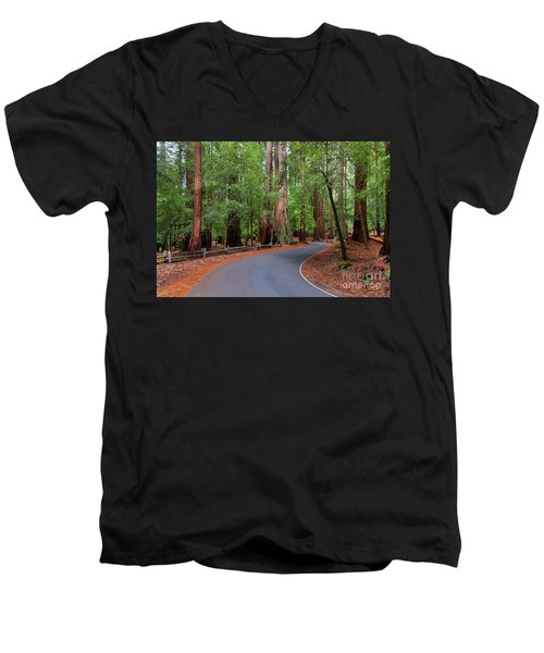 Beautiful Redwood Grove Men's V-Neck T-Shirt