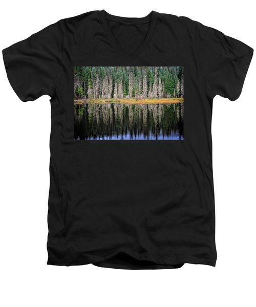 Beauty In Idaho Bog Men's V-Neck T-Shirt