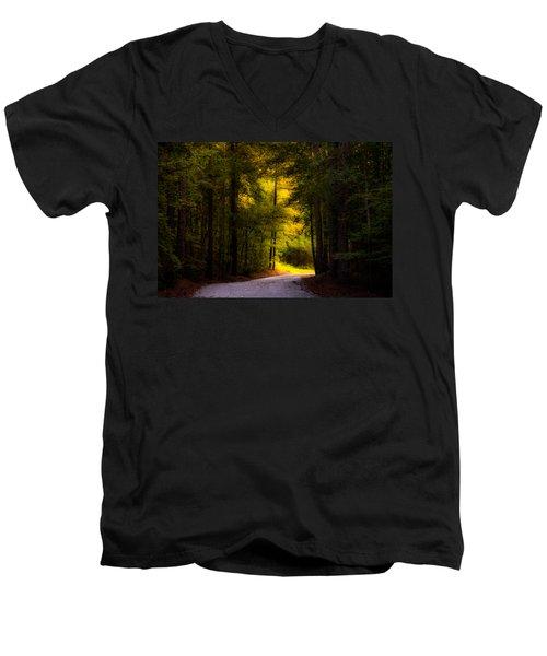 Beauty In The Forest Men's V-Neck T-Shirt