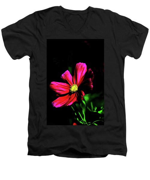 Men's V-Neck T-Shirt featuring the photograph Beauty  by Tom Prendergast