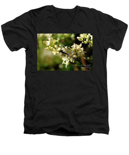 Bee Amongst The Flowers Men's V-Neck T-Shirt