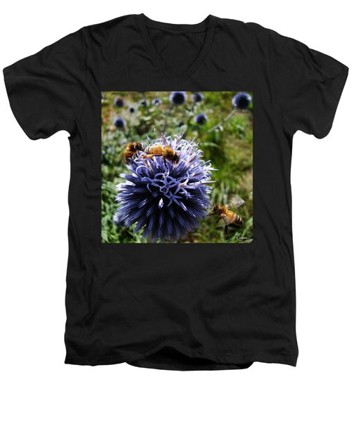 Bee Circles Men's V-Neck T-Shirt