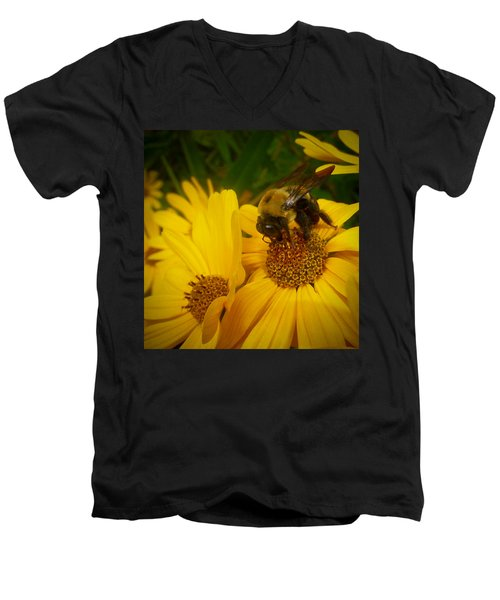 Bee Happy Men's V-Neck T-Shirt