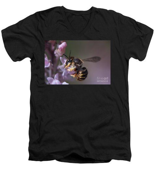 Bee Sipping Nectar Men's V-Neck T-Shirt