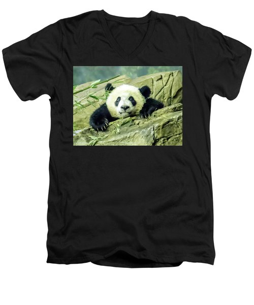 Bei Bei Panda At One Year Old Men's V-Neck T-Shirt