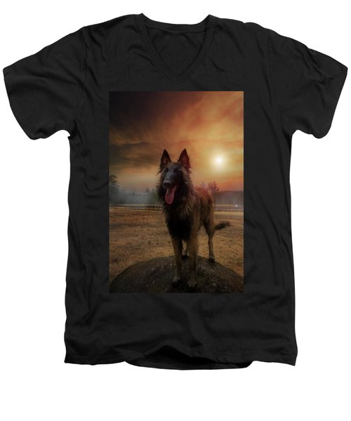 Belgian Shepherd Men's V-Neck T-Shirt by Rose-Marie Karlsen