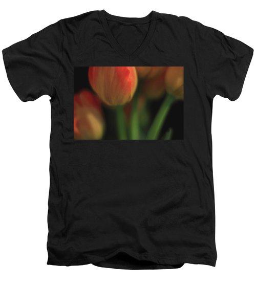 Beneath Men's V-Neck T-Shirt