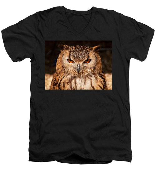 Bengal Owl Men's V-Neck T-Shirt