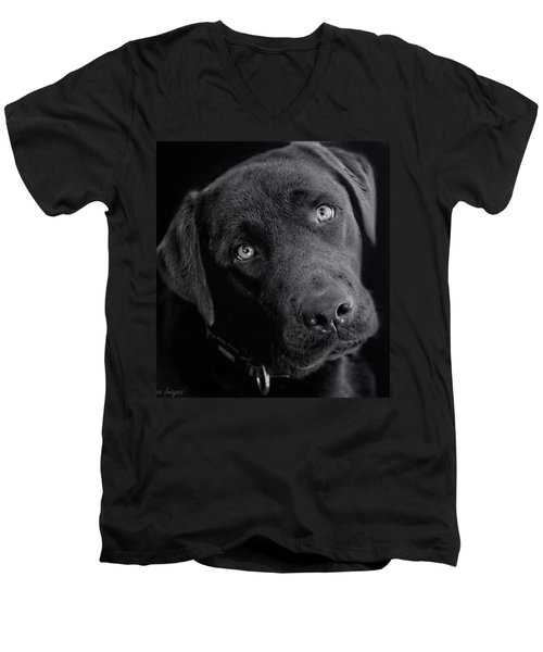 Men's V-Neck T-Shirt featuring the photograph Benji In Black And White by Wallaroo Images