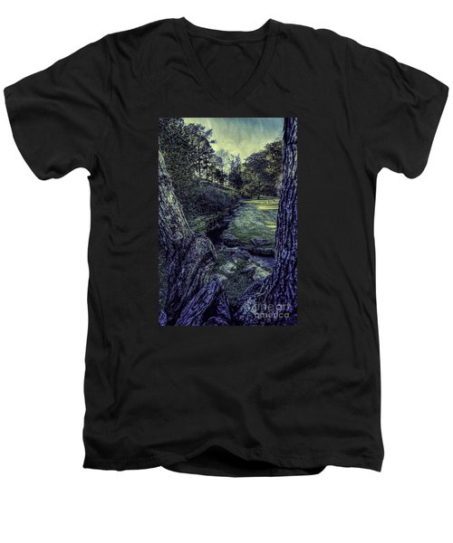 Between The Branches Men's V-Neck T-Shirt by Ken Frischkorn