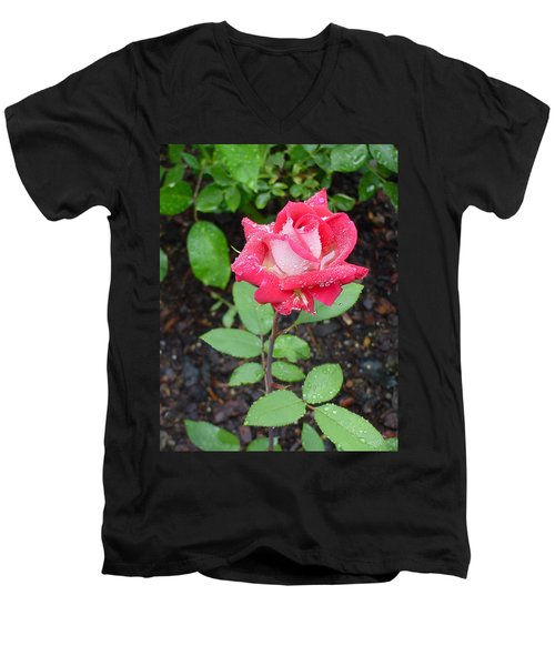 Bi-colored Rose In Rain Men's V-Neck T-Shirt